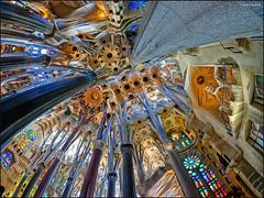 (2308) Sagrada Famlia Barcelona (Fisheye world) (QuimG) Tags: barcelona art architecture arquitectura interiors arte fisheye panasonic gaud catalunya interiores specialtouch quimg quimgranell joaquimgranell afcastell obresdart