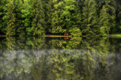 the red bench... (Weirena) Tags: morning trees nature colors fog reflections austria landscapes poetry fineart lakes wallart tyrol schwarzsee kitzbhel weirena ireneweisz