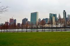 Roosevelt Island, 12.27.15 (gigi_nyc) Tags: nyc newyorkcity winter eastriver rooseveltisland