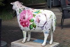 Sharrow Baa (Cumberland Patriot) Tags: sheep painted go cumbria trust baa calvert ewe cumbrian herdwick sharrow goherdwick