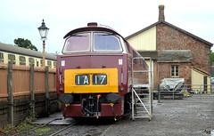 D1010 (R~P~M) Tags: uk greatbritain england train diesel unitedkingdom railway somerset western locomotive 52 westsomersetrailway williton
