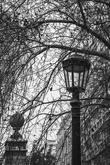 Santiago, Chile. (Glaucia SB) Tags: pictures chile street city trip travel trees santiago winter light vacation bw art southamerica nature beautiful america photo amazing cool nikon perfect photographer loveit vacations 2016 likeit photogtaphy d7100 nikond7100