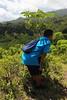 IMG_4913-2 (allisonjbaird) Tags: hawaii oahu hiking northshore bunkers hauula