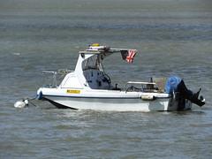 Wild Eel 1 (kenjonbro) Tags: uk england london boat ship plastic riverthames erith grp fibreglass workboat londonboroughofbexley erithpier kenjonbro wildeel1 fujifilmfinepixhs50exr