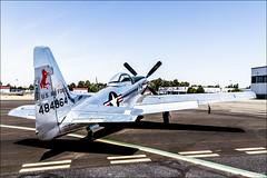 North American P-51D Mustang (eugene.photo) Tags: california usa aircraft may places airshow civil hayward airports aircrafts serialnumber manufacturer p51mustang p51d serialnumbers northamerican 2013 hwd n4223a haywardairportopenhouse 4484864