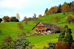 -Lucerne (mawingchung,,) Tags: park sky macro tree tower nikon           d300s