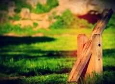 Perspective. (#odie.the.thiiird) Tags: park wood italy parco rome roma canon photography italia fotografie photographie seesaw pinoy degli fotografa banzon acquedotti fotoraflk    tumblr instagram odieson  odiethethiiird