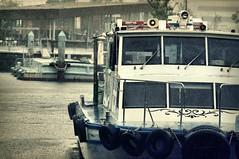 heavy rain (turntable00000) Tags: rain japan photography tokyo boat sony yokohama 365 heavy kanagawa 横浜 takashi 象 nex kitajima 鼻 turntable00000