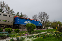 Metra and graden (photo-engraver1) Tags: park railroad wisconsin train garden transportation metra 130 trainspotting kenosha f40ph3