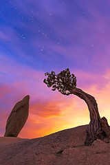The Sentinels (Sairam Sundaresan) Tags: california park longexposure nightphotography light sky orange cliff usa moon white storm color colour tree nature colors rock closeup night clouds canon way stars landscape fire star nationalpark twilight rocks long glow colours bright cloudy joshua pastel iii wide joshuatree magenta dramatic wideangle tent cliffs national le moonrise astrophotography valley hour lone 5d canon5d cracks peaks dust showers milky ultrawide leading juniper balanced fiery milkyway balancedrock luminosity sairam sundaresan canon5dmarkiii 5dmarkiii bestevercompetitiongroup sairamsundaresan lonejuniper