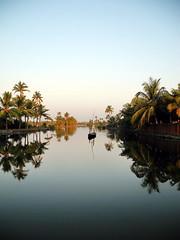 Kerala impressions, the unforgettable Backwaters - 0179 large (frieda ryckaert) Tags: india kerala palmtrees backwaters coconutpalms chellanam backwaterlife keralavibrations keralaferry keralareflections backwatermood keralamood keralacolours