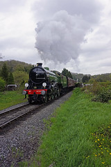 North Yorkshire Moors Railway 40th Anniversary (Steve Robb) Tags: from york uk bridge england black this nikon photographer view hole photos beck gates 5 or yorkshire north young may railway trains class steam 25 user moors locomotive years everyone 40 member 29 11th 37 ruby impala moor a4 12th 13th gala steamy mayflower b1 moorland 060 mpd grosmont nymr 825 61264 61002 45407 61306 60007 darnholme 75029 d7628 37264 5z81 5z79 61306nymr40th