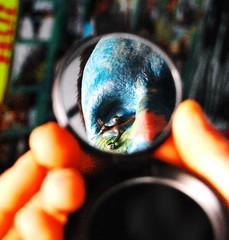 (Marta Marley) Tags: blue azul tattoo mirror piercing espejo tat tatuaje eyelids oneeyed facetattoo tuerto facialtattoo prpados perforacin tatuajefacial perforacindeprpados eyelidspiercing martamarley