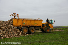 CMC (Deschamps productions) Tags: euro tiger harvest sugar beet ropa harvester cmc betteraves automotrice selfpropelled v83 automoteur arrachage arracheuse intgralle
