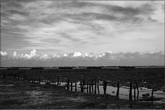 Saxon coastal fish weir at Sales Point - Bradwell Beach (PaulHP) Tags: white fish black beach monochrome point coastal sales essex saxon weir barges bradwell bradwellonsea dengiepeninsula