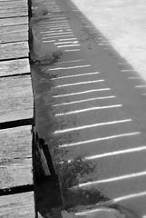 Regarder la lumire... (anna.coluthe) Tags: shadow blackandwhite bw lake ice noiretblanc lumire lac nb ombre rays ponton glace rais lignt potoon