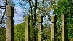 Family Gathering (lincoln_eye) Tags: wood uk trees england sculpture green leaves clouds spring unitedkingdom timber branches may sunny arboretum bluesky lincolnshire lincoln gb trunks