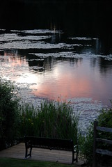 MILL LAKE SEASONS:  LOVELY SERENE EVENING REFLECTIONS ON MILL LAKE,  BC. (vermillion$baby) Tags: abbotsford bc bench blue milllake orange reflection serene silhouette sunset pink storm sunrise fraservalley canada cloud colora lake seasons milllakeseasons wetlands