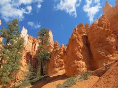 Bryce Canyon National Park (saguarostrength) Tags: utah bryce brycecanyon brycecanyonnationalpark
