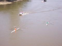 Doggets Race 2013 (sarflondondunc) Tags: thames rowing riverthames lambeth foreshore vauxhall doggetsrace