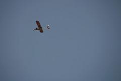 Ces merveilleux fous volants (•Nicolas•) Tags: plane avion ulm nicolasthomas