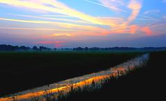 twilight over the pasture (HansHolt) Tags: twilight nightfall schemering avondlicht bluehour sunset landscape pasture meadow weiland cows cow koeien koe sky clouds wolken trails water reflection reflectie oudekene oudediep hoogeveen drenthe canoneos6d canonef1635mmf28liiusm