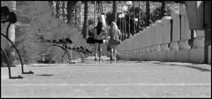 "Low level (Explored) (CJS*64 ""Man with a camera"") Tags: bw holiday mono blackwhite malta explore craig cjs bugibba sunter explored craigsunter cjs64"