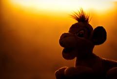 Lion King Remake... (nickodim) Tags: sun toy 50mm king pentax f14 14 lion remake lionking k10d