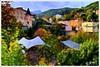 ROYAT, TERRE D'AUVERGNE (Gilles Poyet photographies) Tags: automne soe auvergne puydedôme autofocus création royat aplusphoto parcthermal artofimages rememberthatmomentlevel2