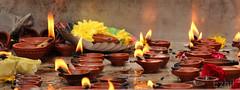 Faith unites fire and flowers !!! (Ezhil Ramalingam) Tags: temple shiva diya tiruvannamalai oillamps fireflowers mahanandhi agalvilakku arunachaleswara