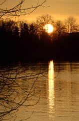 Fraser River Sunrise (Ian Threlkeld) Tags: canada nature port sunrise landscape nikon scenery flickr bc britishcolumbia explore hammond mapleridge fraserriver irt naturephotography beautifulbc nikonphotography ridgemeadows hellobc explorebc d7000 supernaturalbc mynikonlife porthammond