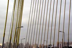 So Paulo (Ha1000) Tags: bridge sky cloud lamp skyline sopaulo gray cable cu prdio nuvem parallel cinza luminria contorno cablestayed paralelo ponteestaiada brasilemimagens