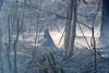 Smoldering Agricultural Burn-off (aeschylus18917) Tags: danielruyle aeschylus18917 danruyle druyle ダニエルルール ダニエル ルール thailand ราชอาณาจักรไทย ratchaanachakthai thai pxt 200400mm fire burning smoldering smoke agriculture burnoff agriculturalburnoff haze ash pollution