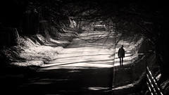 Shadow Play (h_cowell) Tags: road street uk trees shadow woman tree car contrast canon fence walking countryside shadows cheshire zoom pavement pinhole lane lowkey 500d gawsworth efexpro helenacowell