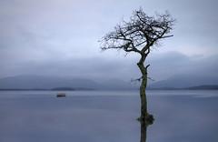 empty boat (kenny barker) Tags: scotland trossachs lochlomond milarrochybay