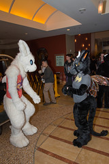 DSC_5675 (tastyeagle) Tags: furry san jose sanjose convention further fc confusion fursuit 2015 furtherconfusion fc2015