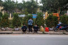 Bac Ninh, Vietnam (silkylemur) Tags: road street people green cars car asian drive bay asia seasia southeastasia warm vietnamese driving country streetphotography roadtrip scooter vietnam vehicles motorbike riding motorcycle vehicle brave scooters fullframe canoneos ontheroad halong halongbay 6d northernvietnam キャノン efmount bắcninh canon6d canoneos6d ãã£ãã³ キャノンレンズ efマウント efマウントレンズ キヤノンeos6d efãã¦ã³ã efãã¦ã³ãã¬ã³ãº ãã£ãã³ã¬ã³ãº ãã¤ãã³eos6d