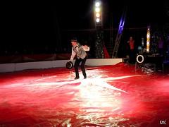 (Portal KMC) Tags: circus safari portal klub kmc 2015 zirkus rzeszw sezon cyrk cyrkowy mionikw cyrku