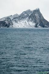 _DSC1054 (Roy Prasad) Tags: ocean travel cruise vacation snow ice expedition rock island penguin volcano lava boat gentoo ship sony south antarctica tamron prasad shetland a7ii southshetlandislands 150600mm royprasad a7m2
