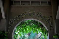 inner bloom (dustaway) Tags: arch australia nsw northernrivers paintedflowers