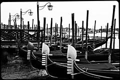 Venice (Angryoffinchley) Tags: venice italy st boat canal san europe italia basilica grand lagoon palace marks po marco piazza venezia venetia doges veneto piave