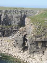 St Govan's Head DSCN8729 (WarwickGB) Tags: wales stgovanshead