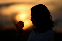silhouette (cosovan.vadim) Tags: flowers sunset summer portrait sun nature girl field nikon dof bokeh atmosphere calm silence poppies d750 f28 70200mm