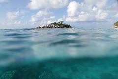 IMG_3771oa (www.linvoyage.com) Tags: sea thailand island sailing yacht corals racha        deadcorals