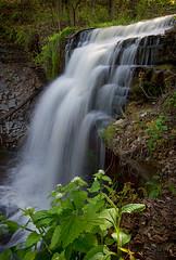 Great Falls (Thankful!) Tags: waterfall spring greatfalls hamilton falls waterdown hfg niagaraescarpment smokeyhollow grindstonefalls hamiltonwaterfalls