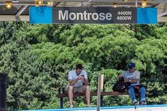 CTA Montrose Blue Line stop (YoChicago) Tags: cta chicago blueline montrose yochicago irvingpark