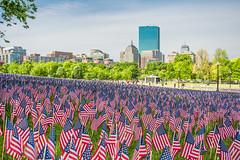 Boston common, Memorial Day 2015 025 (jlucierphoto) Tags: field boston america landscape unitedstates outdoor flag massachusetts flags redwhiteandblue bostoncommon memorialday 2015