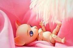 Pang-Ju Jane (SoliAioli) Tags: pink blue white cute cat eyes doll dolls jane sweet blueeyes feather chiffon kitty ears groove bjd ju eyebrows pang pangju