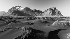 Vestrahorn - Iceland (Bill Higham) Tags: mountain beach grass landscape iceland sand dunes hummocks vestrahorn stokksnes klifatindur