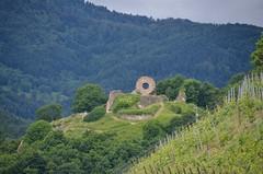 L'oeil de la sorcire (Fabien de Saint-Cyr) Tags: landscape vineyard ruins fortification paysage vignes ruines